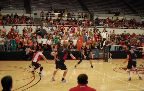 Discontinuation of Stanford's Men's Volleyball has Large Effect