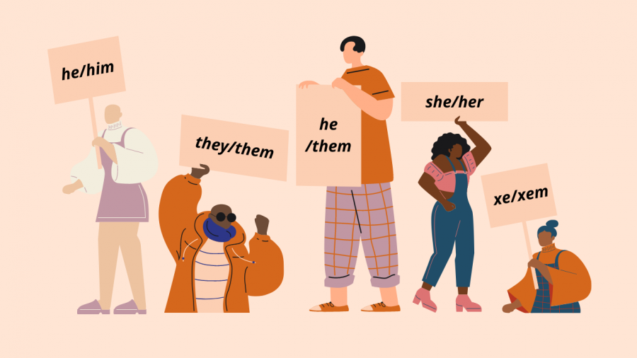 Why You Should Stop Assuming Pronouns