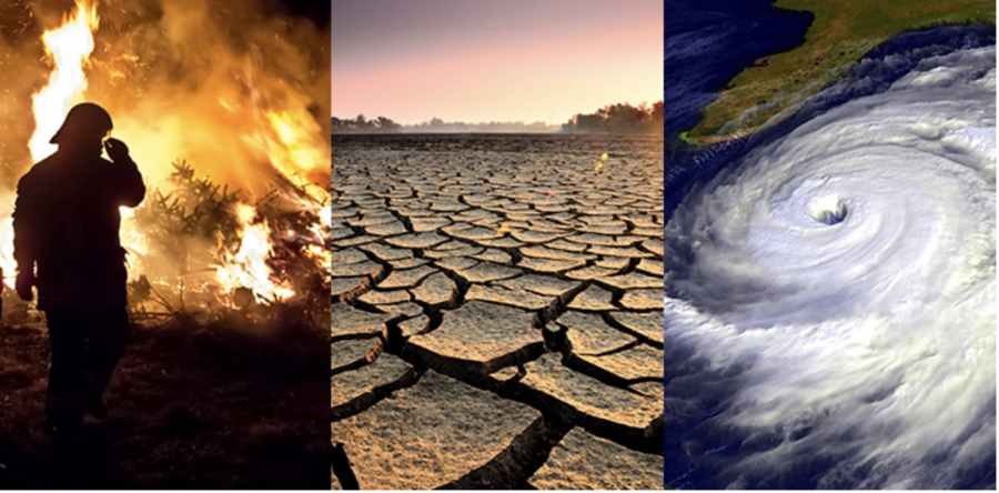 The+Major+Effects+of+Climate+Change