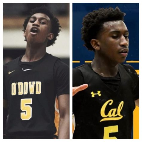 Bishop O'Dowd to Cal: A Basketball Pipeline