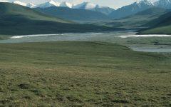 Article National Wildlife Refuge, Alaska