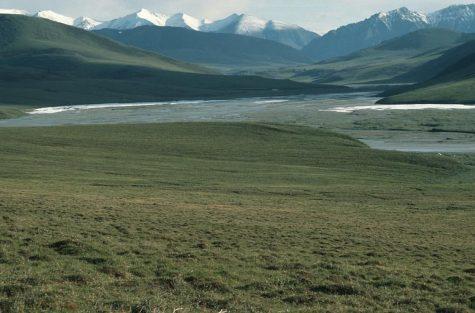 Trump-Led Arctic National Wildlife Refuge Auction Fails